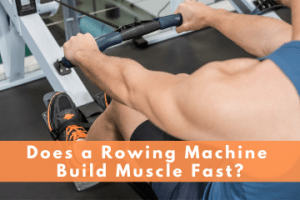 does using a rowing machine build muscle